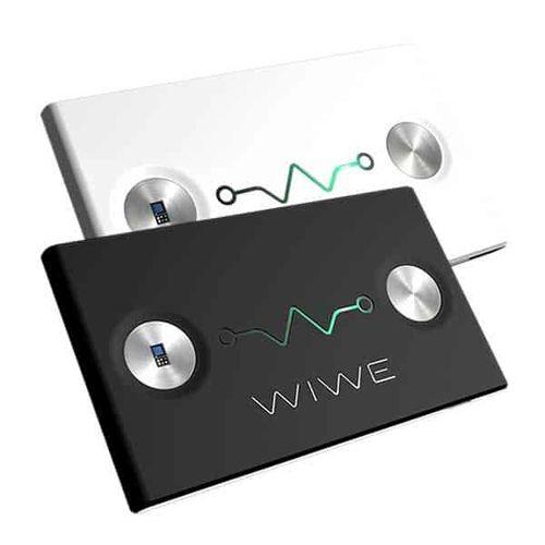 wiwe-1.jpg